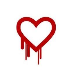 Heartbled-OpenSSL