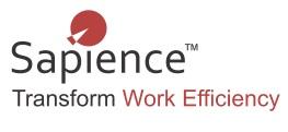 Sapience Analytics Logo