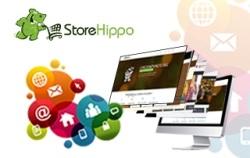 E-Commerce platforms in India burgeoning 1